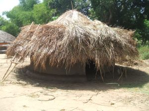 Grass Thatched Hut 1