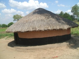 Grass Thatched Hut 2