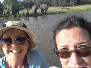 Selfie with elephants!